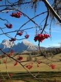 Photo alpi suisi près de l'Autriche , c'est encore l'Italie !